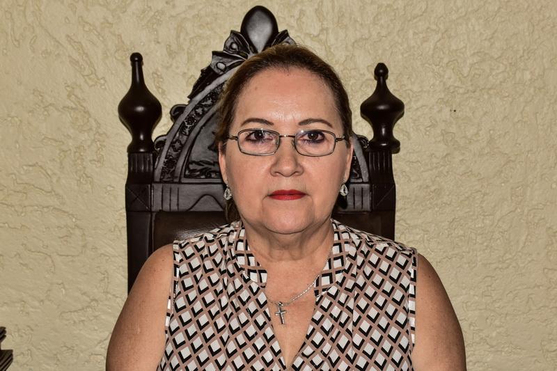 Diputada Minerva Santos García